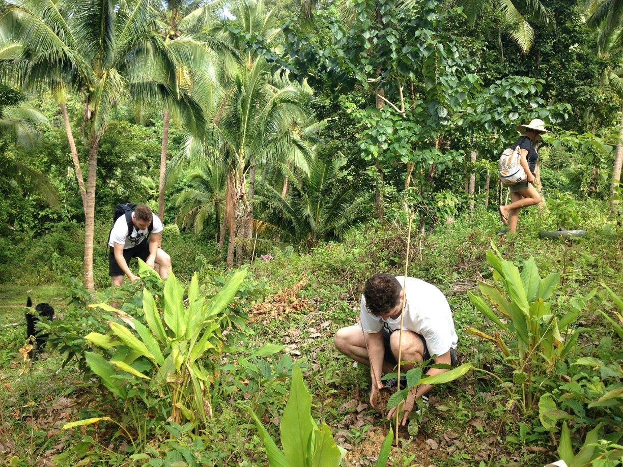 AGREA team and New Zealand social entrepreneurs join the Duyay farming community in planting cacao seedlings on Duyay Hill. Photo: Rachel Espejo